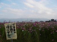 20071028_omochikaeri
