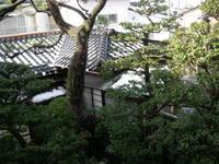 20071119_hatsuyuki_yane