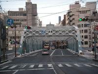 20080117_saigawa_ohhashi