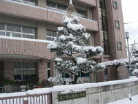 20080217_babasyougakkou