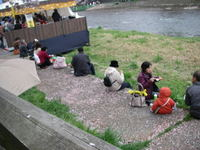 20080413_sakura_jutan