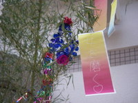 Tanabata_tanzaku_045