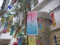 Tanabata_tanzaku_369