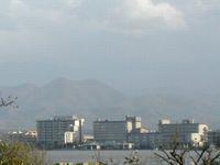 Shibayamagata