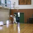 20070127_karei_na_suburi