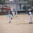 20071104_catshball_03