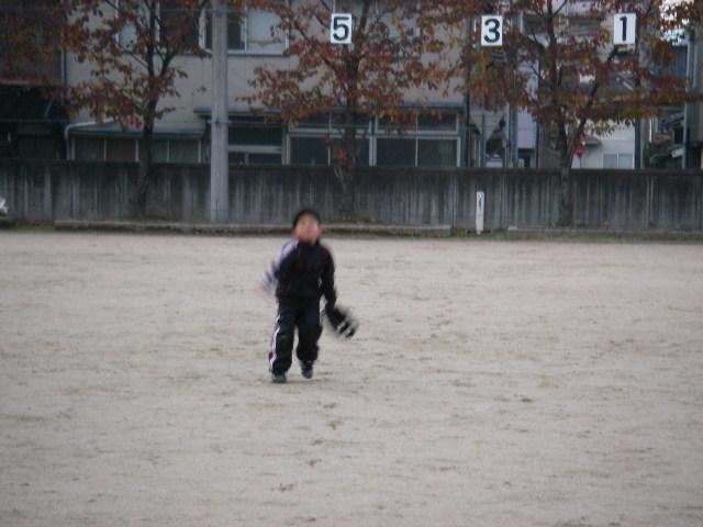 20071119_toreruka