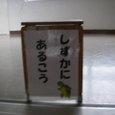 20071208_shizuka_ni_arukou
