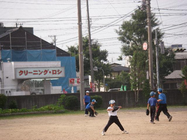 20070706_keito_sah_koi
