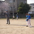 20080406_harikiru_coarch